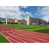 Force Reductio 400 Meter Running Track , Cold Climate Proof Artificial Running Track