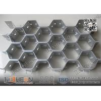 25X2.0X50mm Hex mesh China Supplier