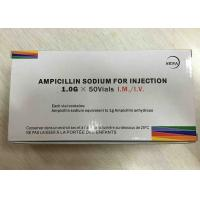 Wholesale Ampicillin Sodium Powder Injection 1.0g Antibiosis Drugs 3 Years Expiration Date from china suppliers