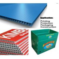 Wholesale PP Corrugated Plastic Sheet/PP Hollow Sheet/PP Corrugated Storage Box from china suppliers
