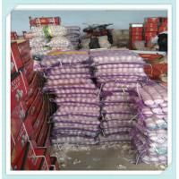 Wholesale Dry jinxiang fresh red normal pure white garlic factory in china for sale from china suppliers