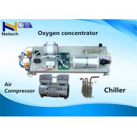 Wholesale Zeolite Two Tower Portable Oxygen Concentrator Parts 220V 110V 3LPM 5LPM 10LPM 15LPM from china suppliers