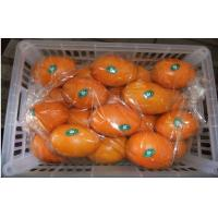 Wholesale Juicy Tangerine Fresh Navel Orange Citrus Contains Protein , 70mm , 80mm from china suppliers