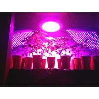Wholesale 2015 Best 150W led grow lights for medical plants from china suppliers