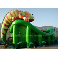 Wholesale 0.55mm PVC Tarpaulin Vivid Chameleon Inflatable Castle Slide 12m For Outdoor from china suppliers