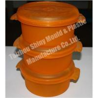 Lunch Box Mould/Mold