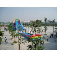 Quality CE Approved Commercial Inflatable Dry Slides Fireproof For Water Game Equipment for sale