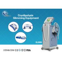 Wholesale Innovative Cryolipolysis Freeze Fat Reduction Machine with 4 Handles Work Cryotherapy With USA Pump from china suppliers