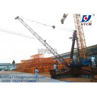 Wholesale 12tons Load Derrick Crane QD2025 66ft Jib Length SINEE VFD Inverter from china suppliers