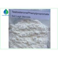 Wholesale 99% Purity Raw Hormone Powders Steroids Testosterone Phenylpropionate for Muscle Mass from china suppliers