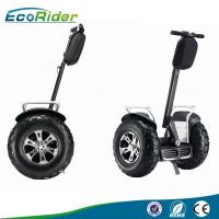 Wholesale Brushless Motor 4000 Watt Segway Electric Scooter Self Balancing with Speedmeter from china suppliers