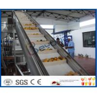 Wholesale 2TPH ~ 20TPH SUS304 Mango Processing Line With 2kg Cans Filling Machine from china suppliers