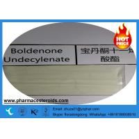 Wholesale CAS 13103-34-9 Boldenone Steroids Equipoise / EQ / Undecylenate Raw Powder from china suppliers