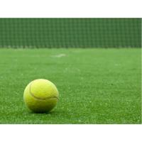 Wholesale Fibrillated tennis recycled artificial turf / grass for exhibition , roadside from china suppliers