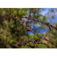 Small Roll Of High Tensile Security Barbed Wire Ribbon Type Wall Spikes On Fence