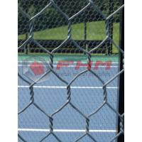 Buy cheap Hex mesh for Paddle Tennis Courts Wholesale 16 AWG Wire Professional Manufacturer from wholesalers