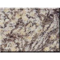 Buy cheap Granite-Granite-Tiles-Tiger Skin Rusty from wholesalers