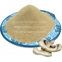 Wholesale Freeze Dried Button Mushroom Powder/2016 NEW NATURAL FOOD/survival food/camping food from china suppliers