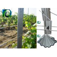 Wholesale Recyclable Grape Vine Stakes 1.5MM Thick from china suppliers