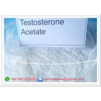 Wholesale High Purity Testosterone Steroids , Testosterone Acetate For Muscle Building from china suppliers