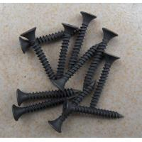 Wholesale Black / Grey Drywall Screw fast moving in India Market from china suppliers