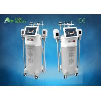Wholesale combined with Cryolipolysis,ultrasonic,Vacuum and RF slimming machine / cryolipolysis slimming machine for beauty salon from china suppliers