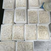 Buy cheap chinese squid processor broken squid ring B grade ring from wholesalers