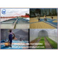 Wholesale Hot Selling 100% HDPE 16 X 16 Eyes Sea food Drying Nylon Screen Net from china suppliers