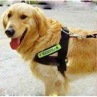 Wholesale Fashion nylon dog harness police dog 3 sizes with big discount 30pcs/lot from china suppliers