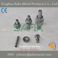 Quality Undercut Anchor/ Undercut Bolt/ Back Bolt/ Stainless Steel 304(A2) 316L(A4) Stone Cladding for sale