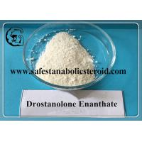 Wholesale Drostanolone Enanthate 472-61-145 Muscle Gain Effective Estrogen Blocker from china suppliers