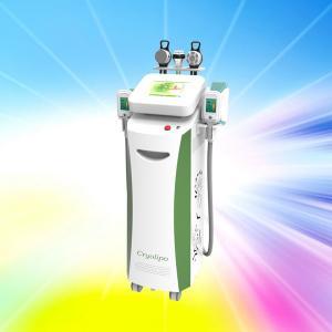 NEW Fat Freezing body slimming cryolipolysis machine