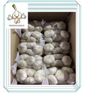 Wholesale 2016 new crop garlic on sale Fresh Garlics fresh white garlic/top quality from china suppliers