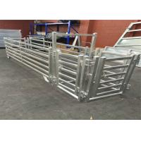 Wholesale 6 Bar Cattle Rail 1.8m High Cattle Panel / cattle yard panel for Australia / New Zeland / America from china suppliers