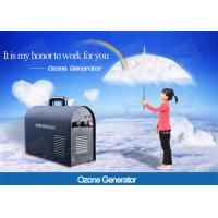 Wholesale 110V 220V Household Ozone Generator 3g 5g 6g Home Air Purifier Pet Odor Remove from china suppliers
