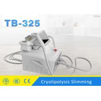 Wholesale 10.4 Inch Portable Cryoliposis Slimming Machine With 2 Heads for Lose Weight from china suppliers