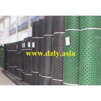 Quality HDPE Geonet for sale