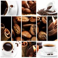 Wholesale customs clearance service that export Kenya coffee bean to mainland of china from china suppliers