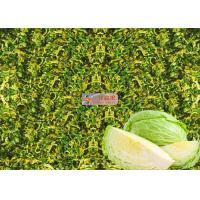 Wholesale Organic Dehydrated cabbage flakes ,  Air Dehydrating cabbage rich in taste from china suppliers