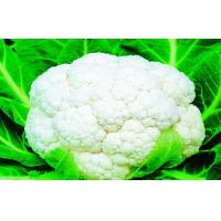 Wholesale Low Carbohydrate Freezing Fresh Cauliflower Preventing Prostate , Ovarian, Taste delicious from china suppliers