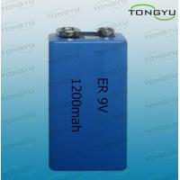 Wholesale ER 10.8V 1200mAh Lithium Thionyl Chloride Battery for Camera , Computer RAM from china suppliers