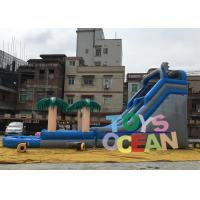 Wholesale Large Delphinus Delphis Custom Inflatable Water Slide For Kids / Adults from china suppliers