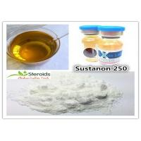 Wholesale Medical Testosterone Blend Bulk Steroid Powders Sustanon 250 CAS 58-22-0 for Cutting Cycle from china suppliers