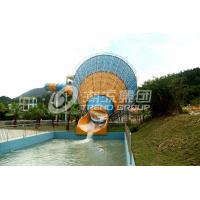 Wholesale Water Playground Equipment / Fiberglass Water Slides in Themed Water Park from china suppliers