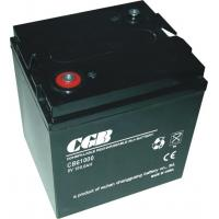 Wholesale 100AH 6 V Rechargeable Battery Free Maintenance With CE Standards from china suppliers