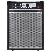 Wholesale Guitar Stage Audio Equipment With MP3 Digital Player And Remote Controller from china suppliers