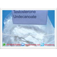 Wholesale Testosterone Steroids Pharmaceutical Testosterone Undecanoate For Bodybuilding from china suppliers