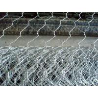 25mm Hole Size Chicken Wire Mesh with 20 guage wire used in garden