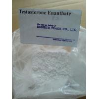 Quality Powerful Hormone Raw Testosterone Powder Keep Blood Levels Stable for sale
