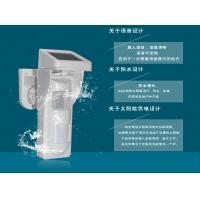 Wholesale Outdoor Pet Immunity PIR Voice Alarm Motion Detectors With Solar Power from china suppliers